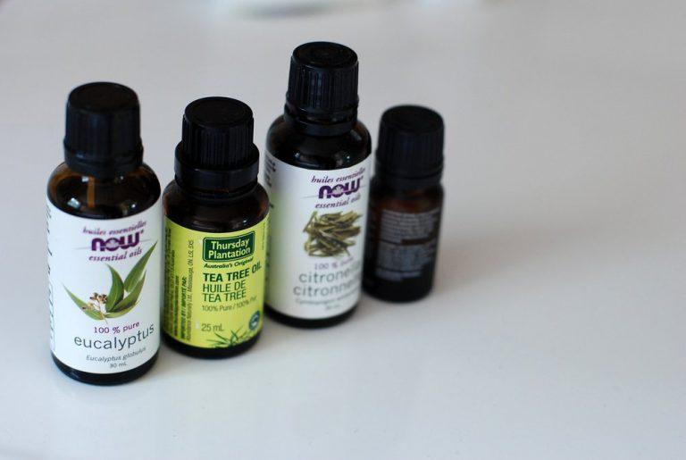 I benefici del Tea Tree Oil