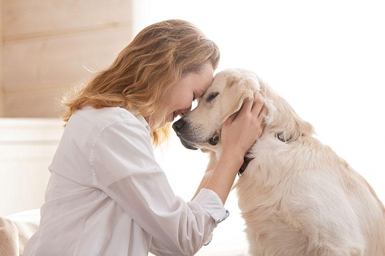 cause e problemi alle articolazioni del cane
